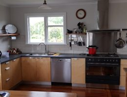 Birch Ply wood kitchen with laminated bench top