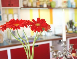 Colourfull retro kitchen